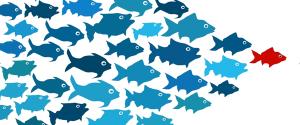Fish-leadership-600x250